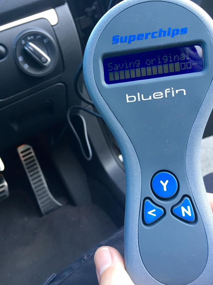 bluefin-1